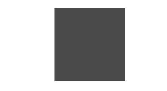 icon seitenbrenner